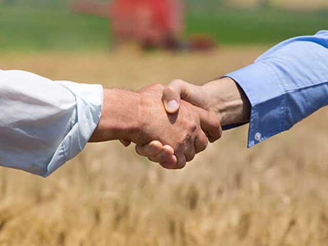 handshake in a field